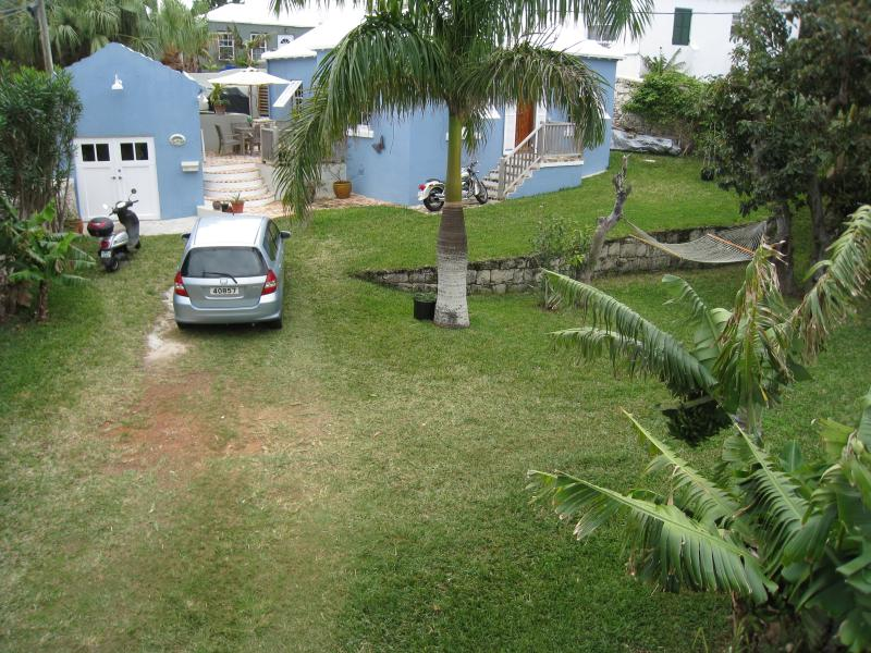large private yard with palm trees and fruit trees