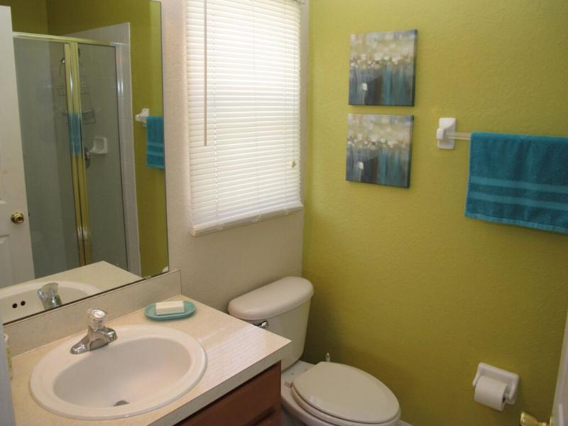 Ensuite bathroom for Master bedroom #1