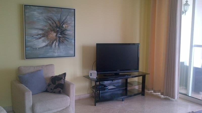 Flat screen TV and DVD.