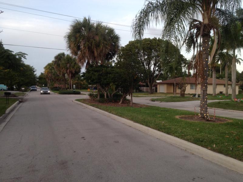 La calle al atardecer, mostrando la carretera está dividida por una mediana de césped y palmeras. No tiene mucho tráfico.