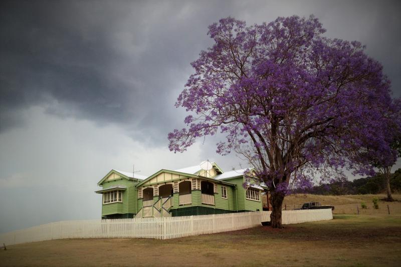 Un rétro classique, positionné élevé sur une ferme de grand pays pour le nec plus ultra en vacances « arbre-change »