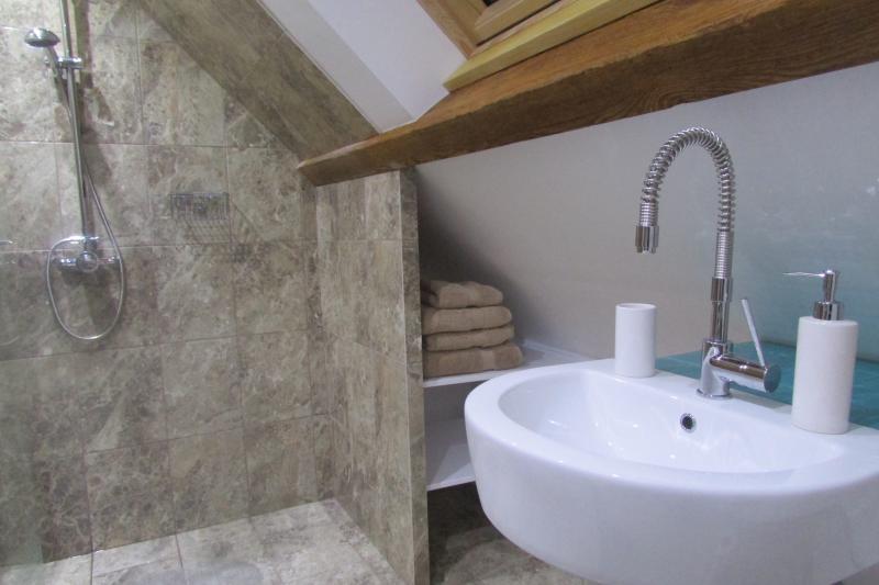 Modern bathroom shower/wetroom.