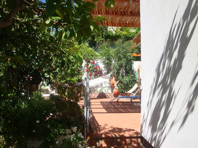 corner of the garden and terrace