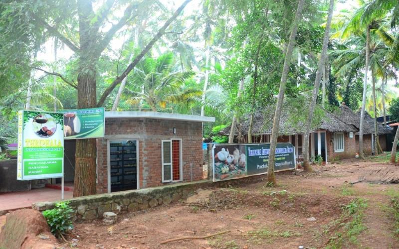 Thriphala Ayurveda panchakarma Centre, holiday rental in Kovalam