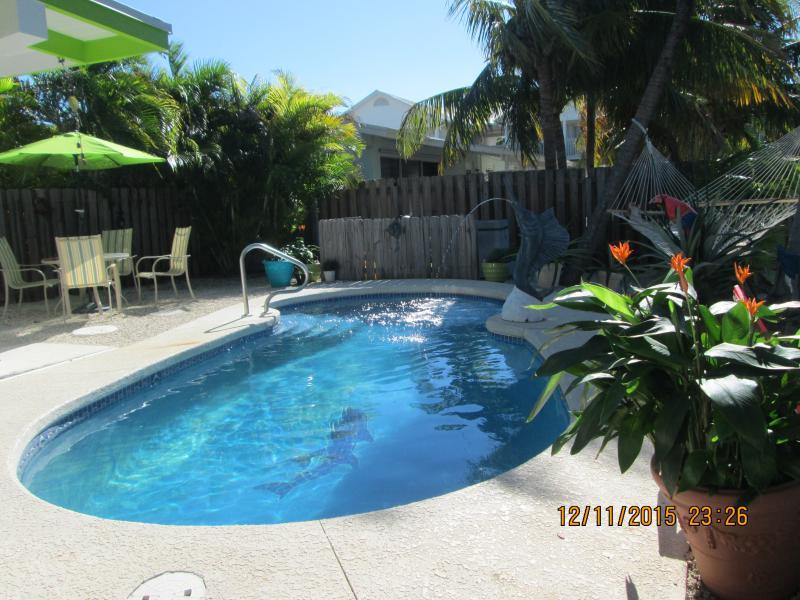 Área de la piscina, hamacas y comedor para 4, palmeras sombrear el área