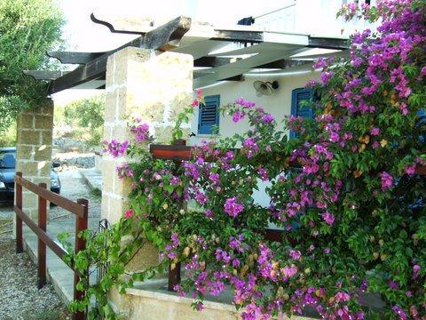 Accogliente monolocale vista mare a Pescoluse – semesterbostad i Pescoluse