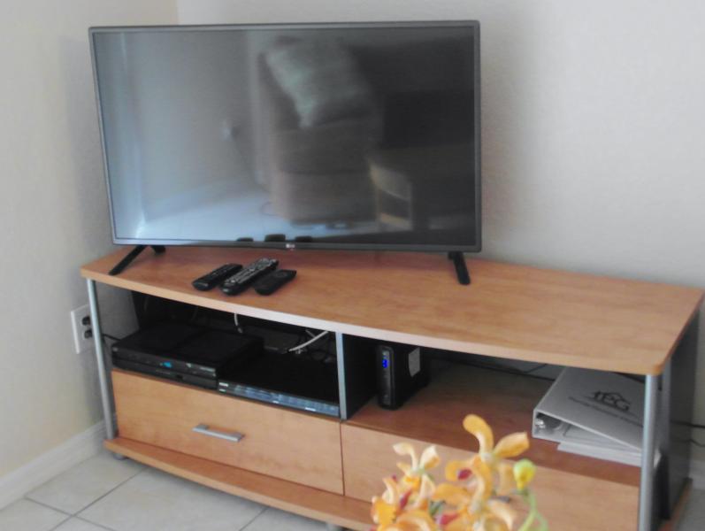 42' TV et lecteur DVD dans le salon