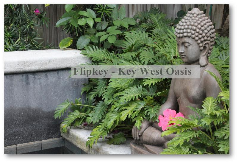 The Garden Buddha at Key West Oasis