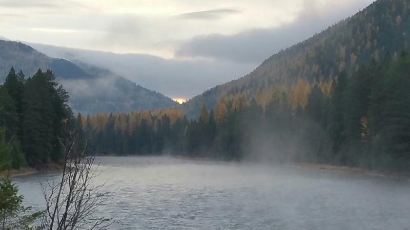 Flathead river just up the road from us