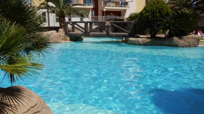 Beautiful Gated Pool with Jacuzzi, baby pool and showers.
