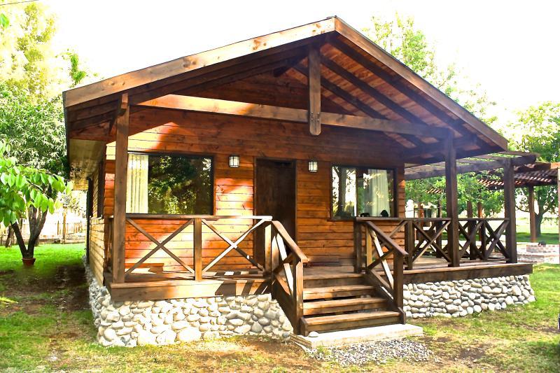 Cozy Cabin by the River, location de vacances à Région de l'Araucanie