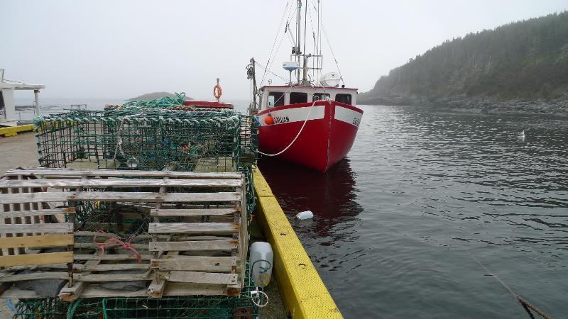 Our wharf.