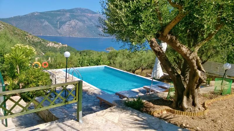 the pool (Arethusa)