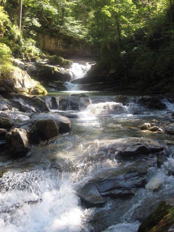 Ausflugsziel Sommer: Wanderung am Marbach