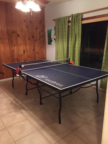 ping pong fun!