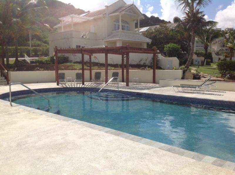 Large pool and sunbathing area - 50 yards from the villa