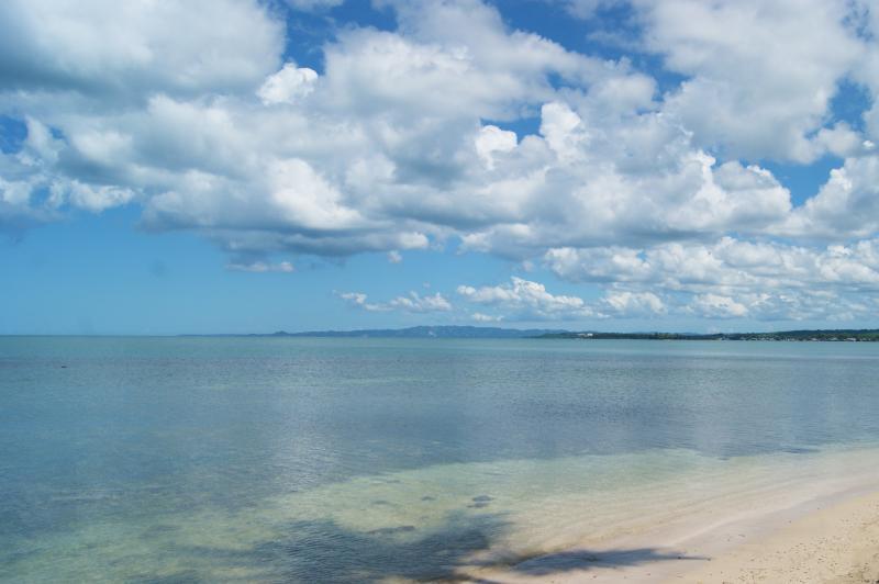 Partial beach view