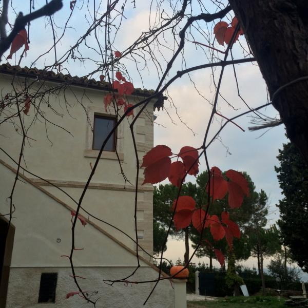 Casale Fonte delle Pietre  'vista autunnale lato sud '
