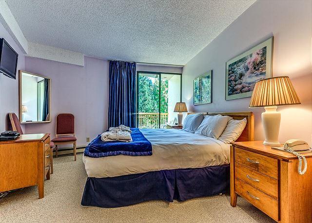 Master Bedroom showing TV