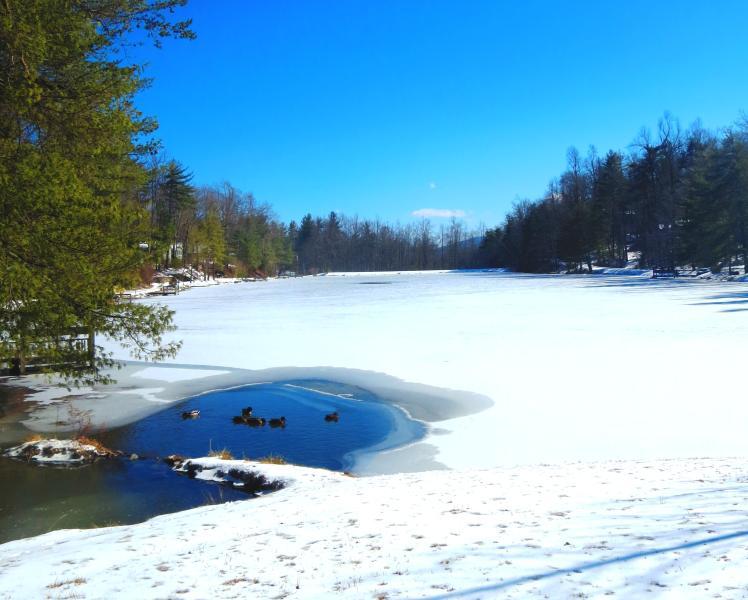 Lake Hosea...beautiful in all seasons!