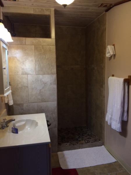 promenade en mosaïque dans la douche