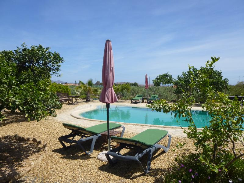 Finca Arboled's 10 x 5 metre pool in idyllic country location.
