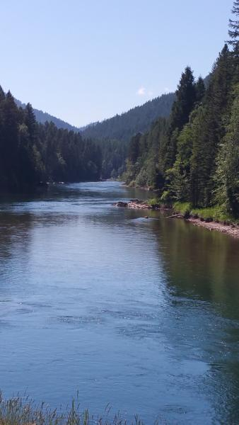 Just up the road  the flathead  river.