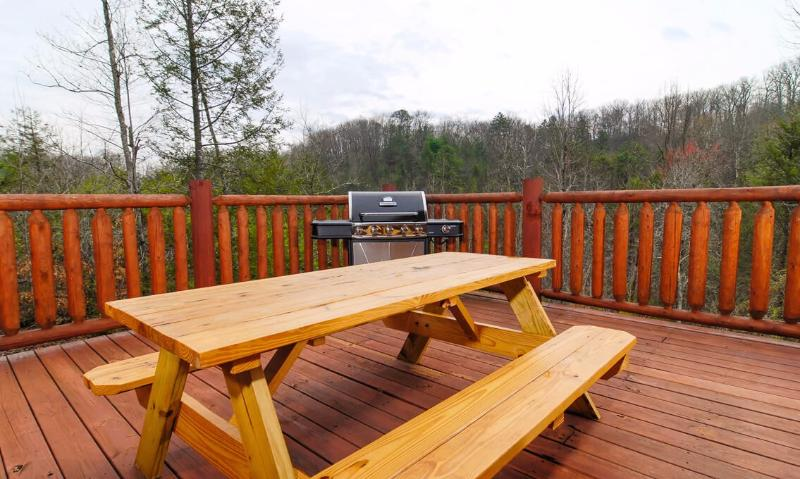 Picnic table and gas grill
