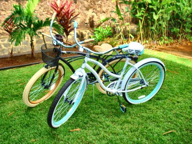 Enjoy riding along a bike path that winds along the famous North Shore beaches!  We have 4 bikes!