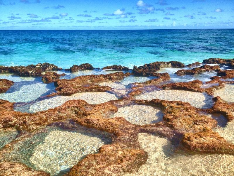 Explore these tidepools near the beach behind the house