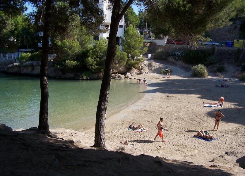 Caló d'en Pellicer Beach at 100m
