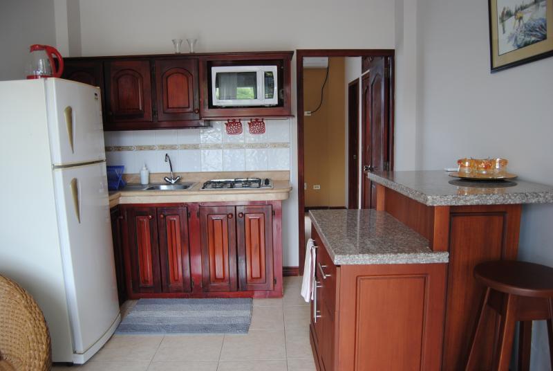 I Br apt kitchen