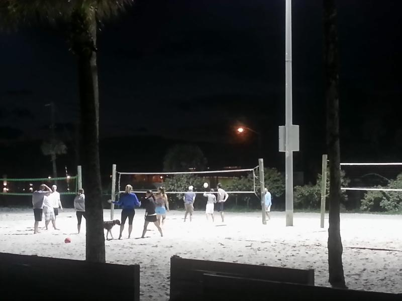 Beach volleyball?  Exercise, relaxation,  friends.
