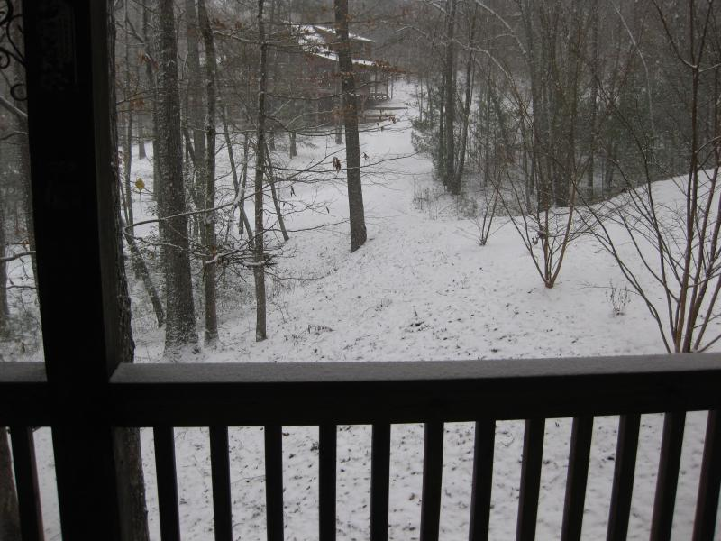 Winter view from my deck.