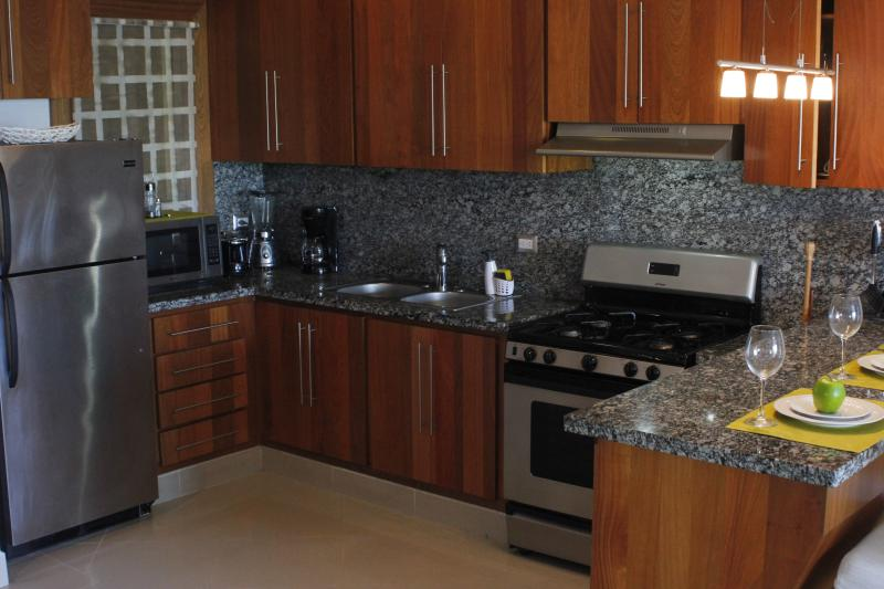 Kitchen fully-equipped with basic appliances