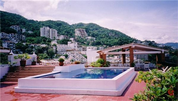 Roof Top Pool and Jungle View