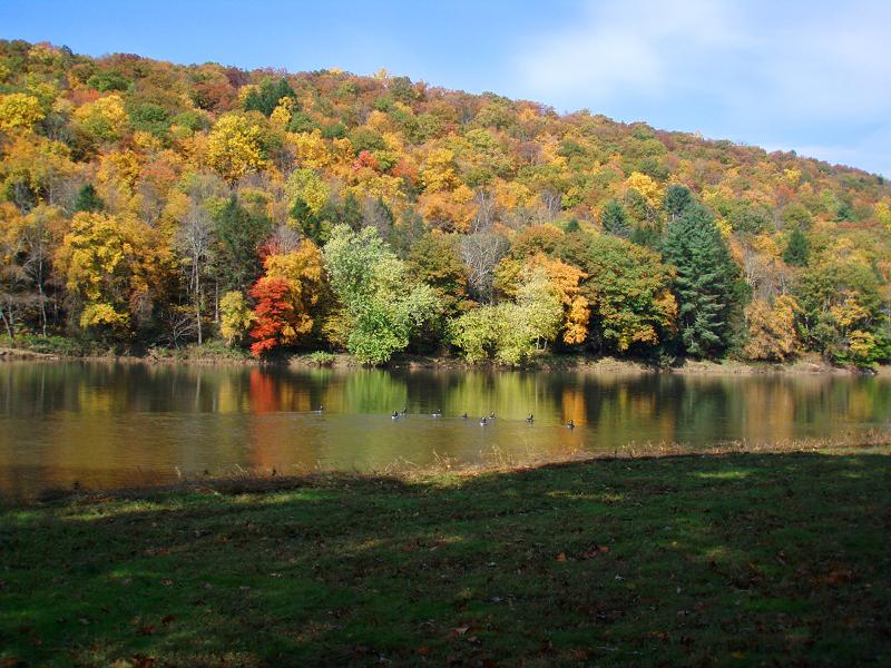Beautiful autumn colors can be seen from this vacation rental's deck.