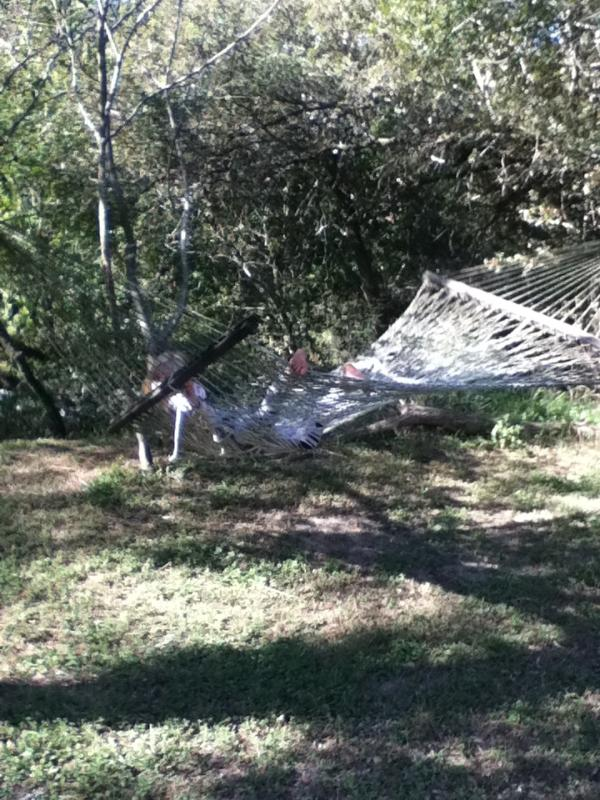 hammock therapy in the Fall by river