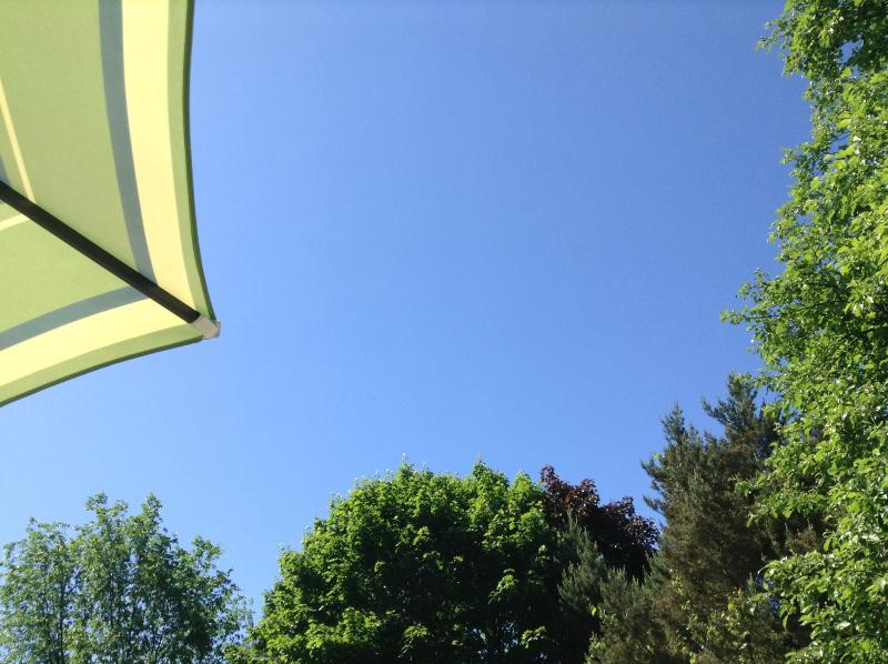 The view from under the patio umbrella
