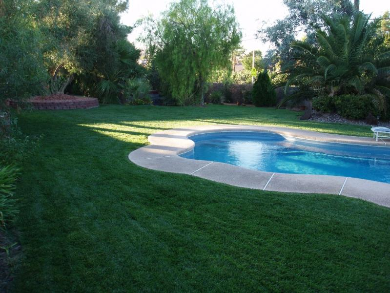 Large pool on 1/2 acre