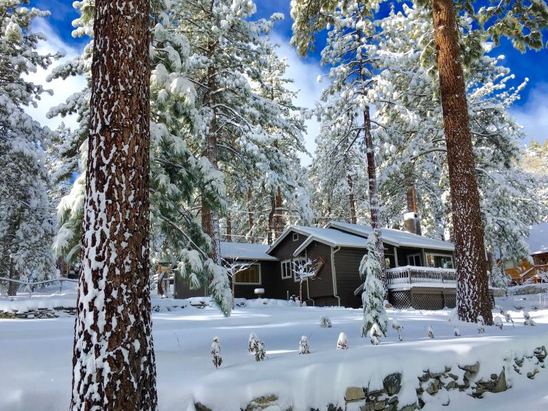 Whispering Pines Cottage January 7, 2016 with 2 feet of snow