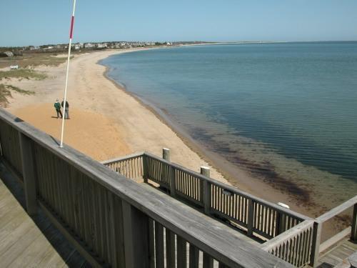Cockle Cove Beach South Chatham