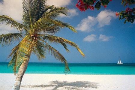 ***SERENITY*** - 2 Bed/2Bath EAGLE BEACH CONDO, holiday rental in Palm - Eagle Beach