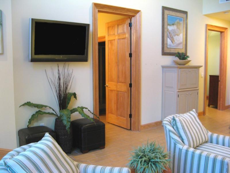 Family room TV area