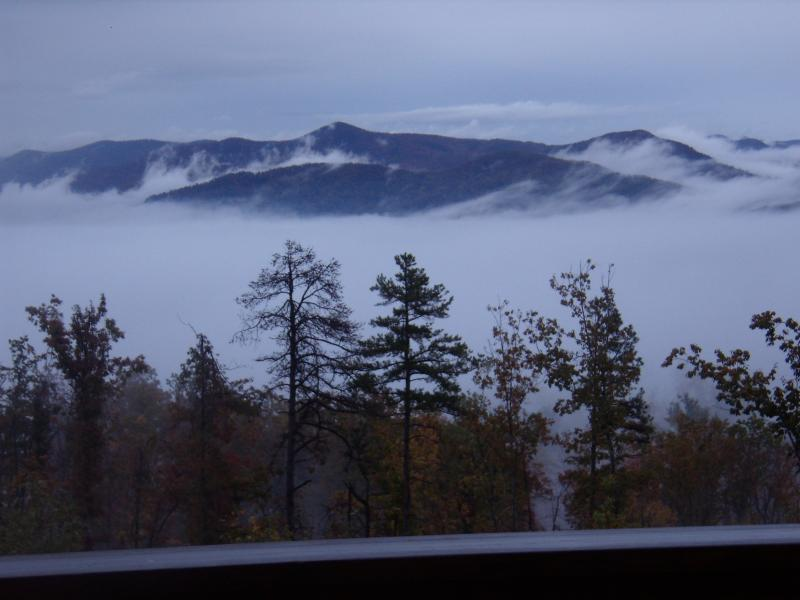 Misty morning from cabin deck