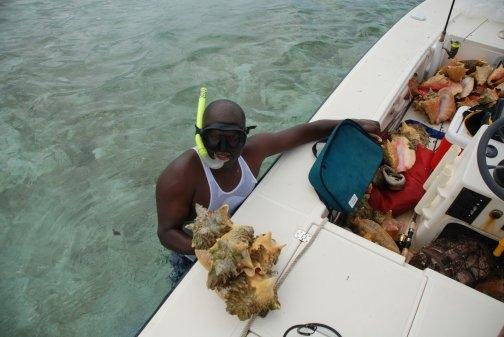 Middle Caicos Guide, Ice Robinson gathering treasures from the sea