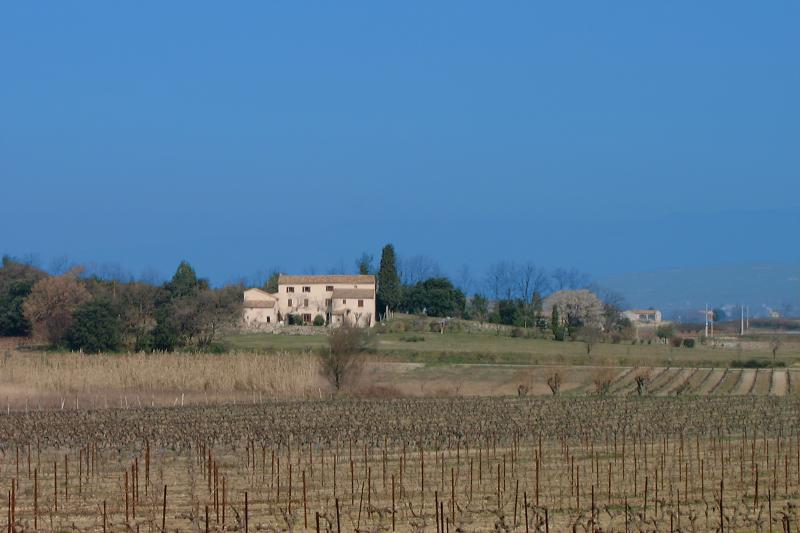 the house from the vineyards (in Winter)