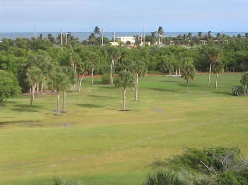 View from back of our building across Carlin Park and ocean is only 700 yards