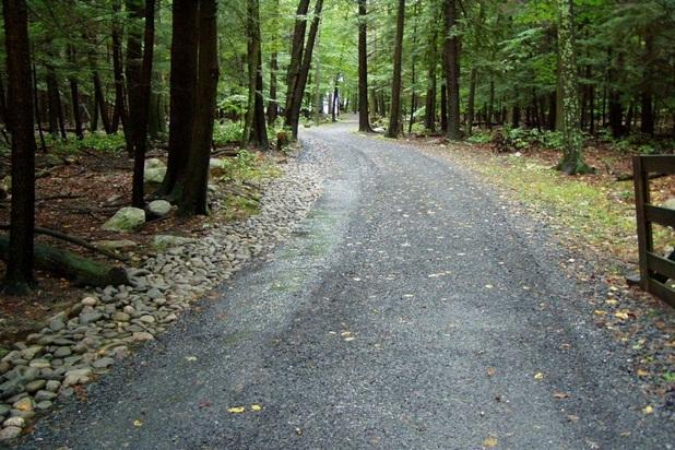 Driveway to Hidden Cedar Inn, located within a private old growth forest.