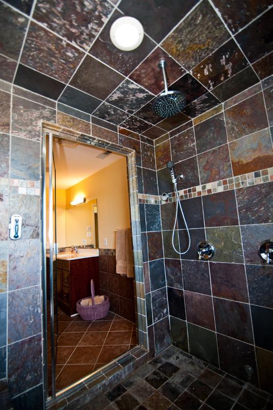 Master Bath Room Steam Shower!